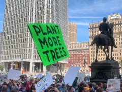 #climatestrike - #philly - Plant more trees